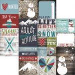 "Simple Stories - Snow Patrol - Double-Sided Cardstock 12""X12"" - Elements #2"