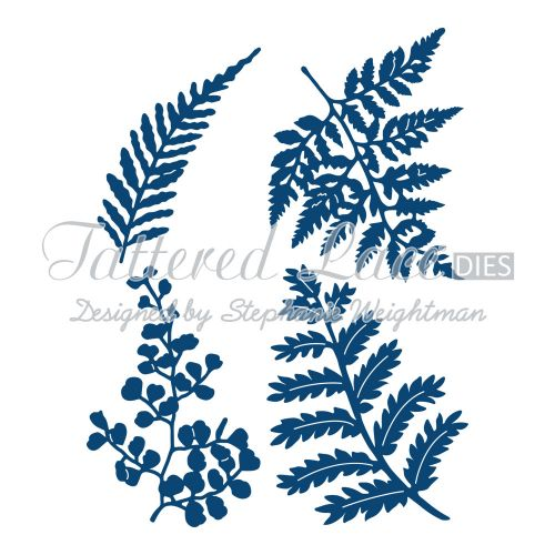 Tattered Lace Dies - Ferns