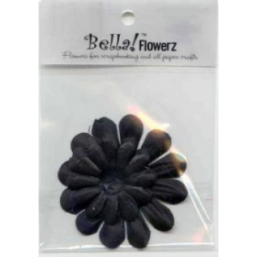 Bella - Flowers - Pack - Black