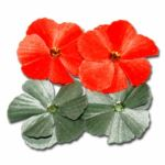 Maya Road - Velvet Jewel Flower - Orange And Green